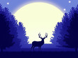 Night forest scenery with a silhouette of a deer.