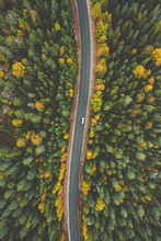 Aerial View Of Fall Landscape, Road In Beautiful Autumn Forest