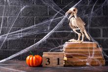 Halloween Background With Bird...