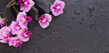 Zen beauty. Orchid flowers and spa black stones, top view flat lay background with copy space
