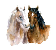 Cute Watercolor Horses On The ...