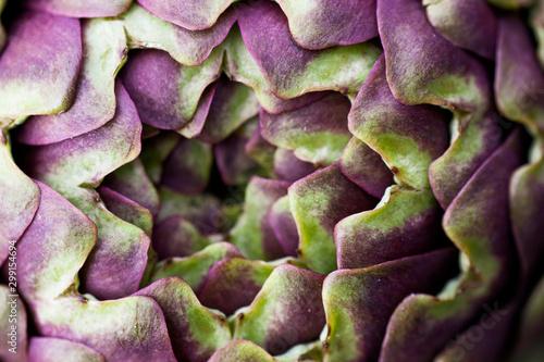 Fototapeta artichokes details with macro lens obraz