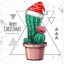 Hand Drawing Cactus In New Yea...