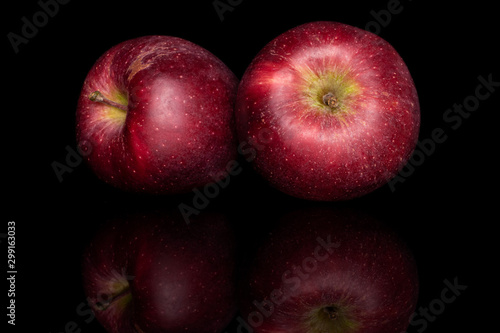 Obraz na plátně Group of two whole fresh apple red delicious isolated on black glass