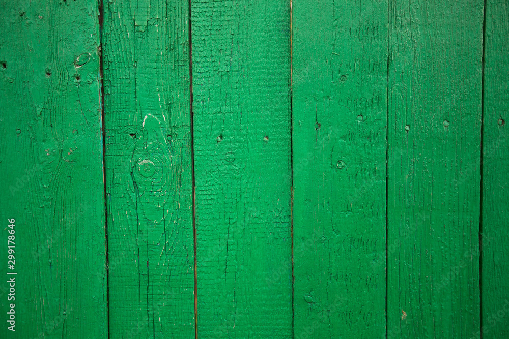 Fototapety, obrazy: Texture of the wooden wall painted with green paint.