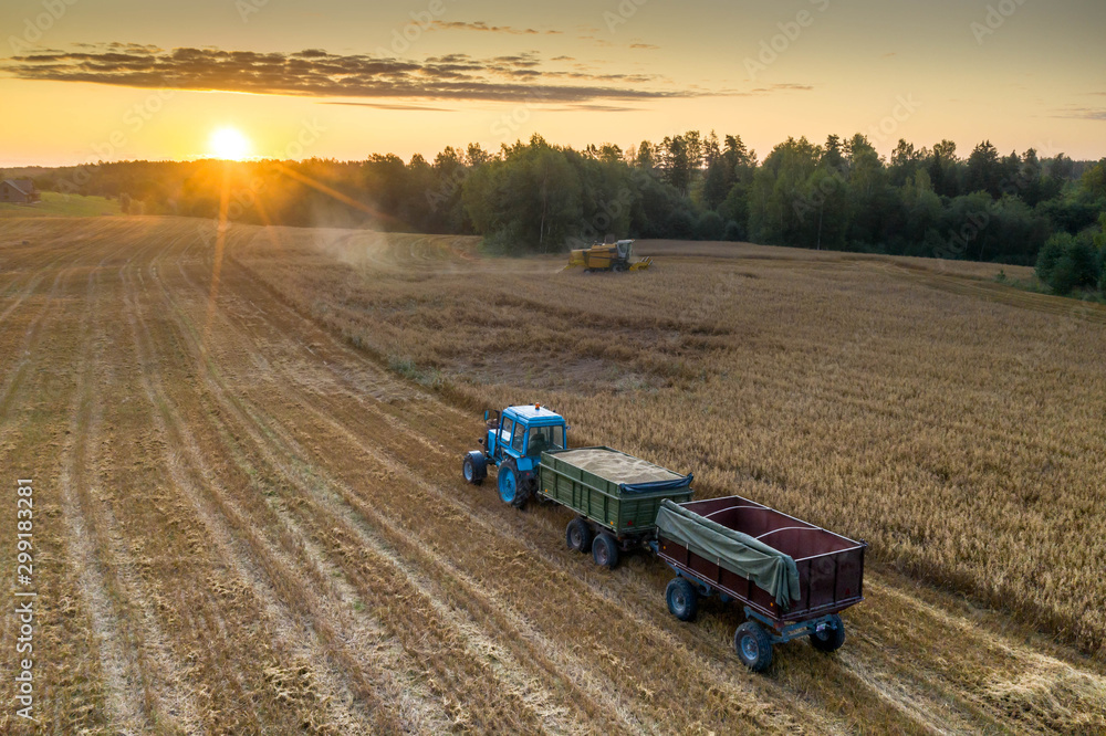 Fototapety, obrazy: View from above. Combine harvester. Agricultural landscape.