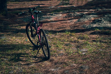 Bicycle With Grass Garden Forest On Morning, Natural Adventure Of Travel, Moutain Bike With Exercise Concept