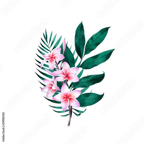 kompozycja-roslin-tropikalnych-i-kwiatow-botaniczne-akwarela-zielone-liscie-egzotyczne-palma-kokosowa-monstera-drzewo-bananowe-plumeria
