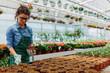 Leinwanddruck Bild - Young woman working in beautiful colorful flower garden greenhouse