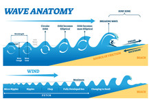 Wave Anatomy Vector Illustrati...