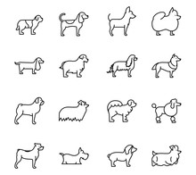 Set Of Dogs Breed Standing Ico...
