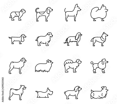 Fotografia set of dogs breed standing icons linear style