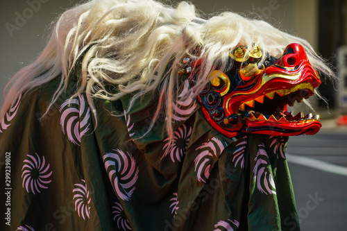 Obraz na plátně  躍動感のある獅子舞のイメージ