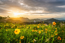 Beautiful Nature Scenic Landscape Wat Phra Thad Phra Son Kaew At Sunrise On Hill Top, Famous Place Tourist Travel Phetchabun Thailand, Tourism Destination Asia Summer Trips, Outdoor Spring Background