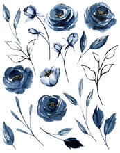 Set Watercolor Flowers Painting, Floral Vintage Illustrations With Navy Blue Roses And Leaves. Decoration For Greeting Card, Birthday, Wedding Design. Isolated On White Background.