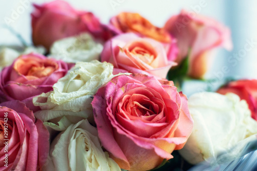 Fotomural Bouquet of roses wilt