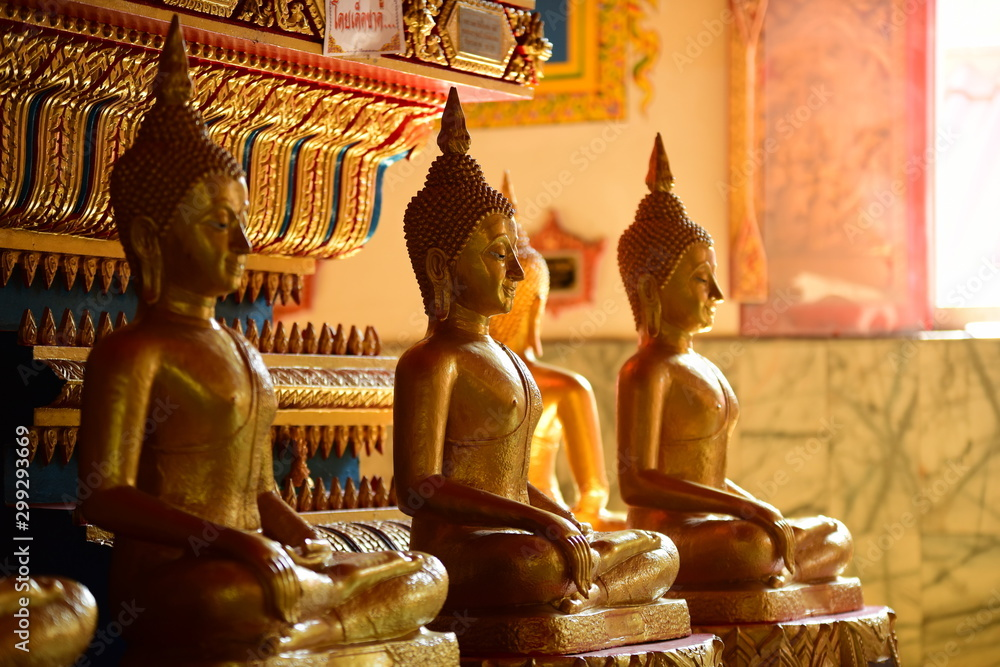 Fototapety, obrazy: Golden statue of buddha in temple, Thailand