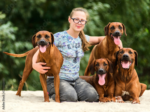 Slika na platnu Smiling girl and four happy cheerful Rhodesian Ridgeback dog