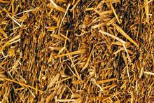 Background Of A Dried Straw Ba...