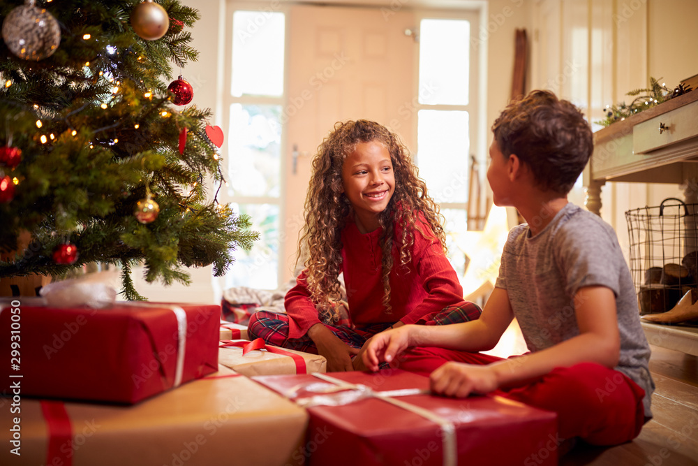 Fototapety, obrazy: Excited Children Opening Presents By Tree On Christmas Morning