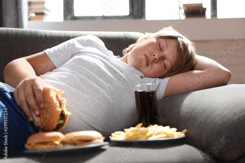 Fotografie, Obraz  Overweight boy sleeping on sofa surrounded by fast food