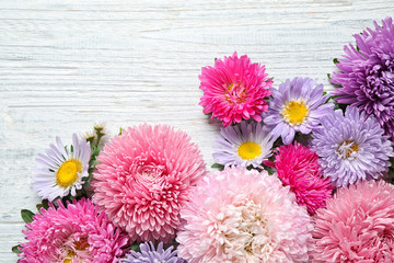 Flat lay composition with beautiful aster flowers on white wooden table. Space for text
