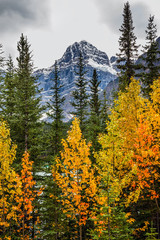 FototapetaMagnificent northern autumn