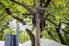 Tangle Of Electrical Cables And Communication Wires On Electric Pole With CCTV Camera And Tree.