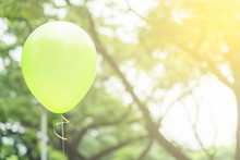 Green Balloon Floating With Green Leaves Bokeh