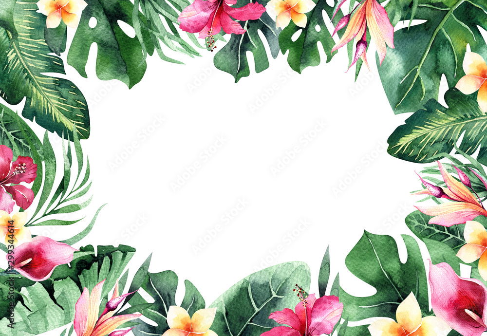 Fototapety, obrazy: Set of bright watercolor tropical monstera leaves. bouquet tropic palm leaf, flower and branches from the jungle. Exotic background botanical design hawaii