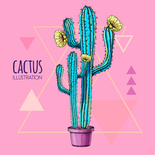 Hand Drawing Blue Fluorescent Cactus Vector Illustration Pink Background