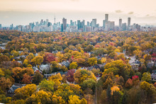 Autumn Aerial Photography Of T...