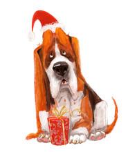 Cartoon Dog. Basset Hound With Christmas Present Box