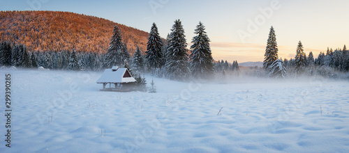 Shelter In The Misty Meadow Surrounded By Snow Covered Spruce Trees In The Last Canvas Print