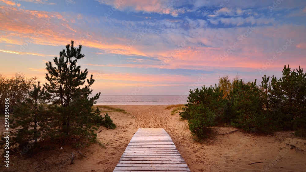 Fototapety, obrazy: Baltic sea shore and a road through the sand dunes