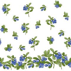 Blueberry. Seamless pattern...