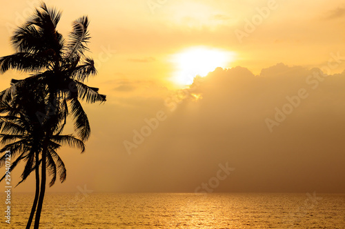 Keuken foto achterwand Ochtendgloren Sunset over the ocean. Against the sky the dark silhouette of a coconut tree.