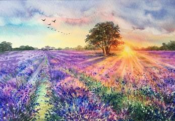 Watercolor lavender field. Sunset lavender field. Violet background. France Provence. Spring summer postcard banner. Fragrant flowers. Aroma