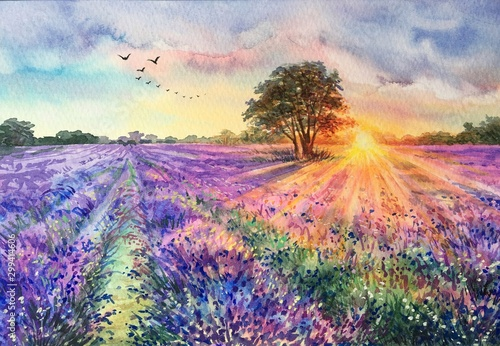 Watercolor lavender field. Sunset lavender field. Violet background. France Provence. Spring summer postcard banner. Fragrant flowers. Aroma - fototapety na wymiar