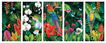 Set Of Backgrounds With Tropic...