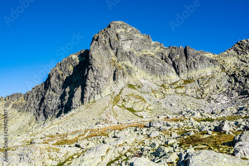 Fototapeta Peak - Ostry stit (Ostry Szczyt) is a popular mountain climbing destination for mountaineers. View of the wall and ridge in the summer scenery. Tatra Mountains, Slovakia. obraz