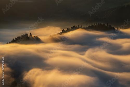 Foto auf AluDibond Grau Verkehrs Pieniny foggy sunrise