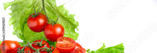 Fototapeta ripe tomatoes with lettuce leaves on a white background obraz