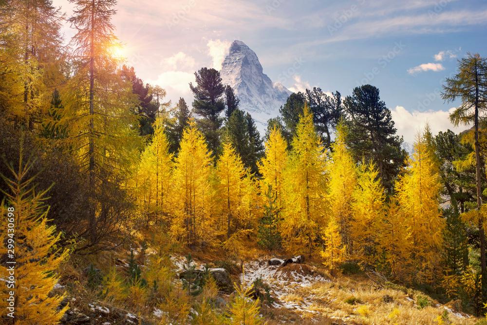 Fototapety, obrazy: Matterhorn and Autumn