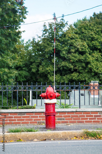 Fire Hydrant with an arrester in a residential area painted in red and white colors