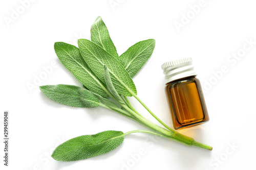 Garden Poster Spa Close up fresh green sage herb leaf with a bottle of essential oil on white background , herb essence concept