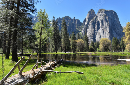Cathedral Rocks view from the valley, Yosemite National Park, California, USA Wallpaper Mural
