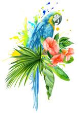 Watercolor Illustration, Jungle Plants, Parrot Macaw Bird