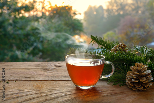 Recess Fitting Tea Hot tea in a glass cup on a rustic wooden table outdoors in the garden on a beautiful autumn day, health concept against cold and flu, copy space