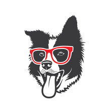 Border Collie Dog Wearing Red Eyeglasses - Isolated Vector Illustration - Vector